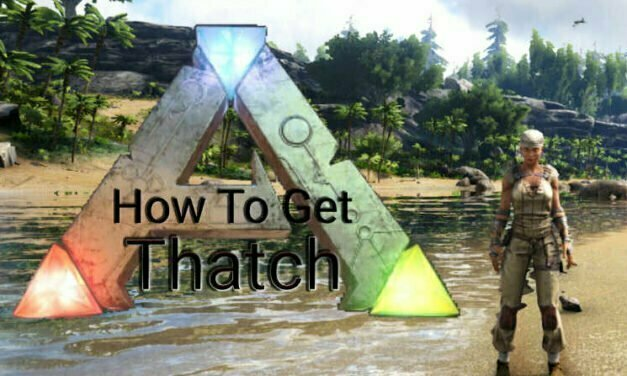 How To Get Thatch In Ark Survival Evolved