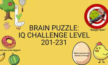 Brain Puzzle: IQ Challenge Level 201-231