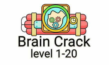 Brain Crack Level 1-20
